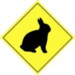 26ème week-end des ateliers des amis du lapin noir